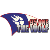 95 One - The Wolf